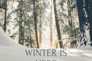 HOW TO SURVIVE WINTERS IN THE UNITED STATES